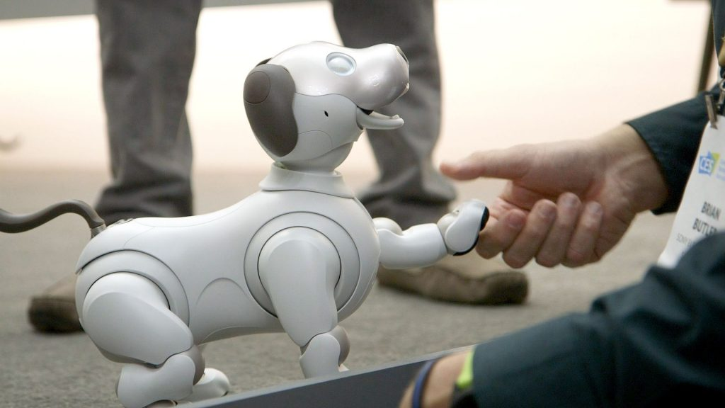 A person holding hands with the Sony Aibo.
