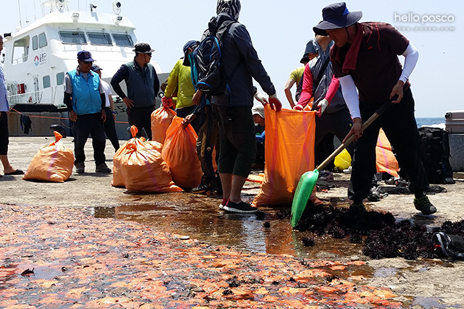 해안의 쓰레기를 치우는 사람들