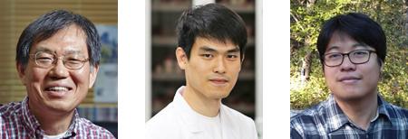 포스텍 화학과 김기문 교수, 박사과정 황우습 씨, IBS 복잡계 자기조립연구단 백강균 박사.