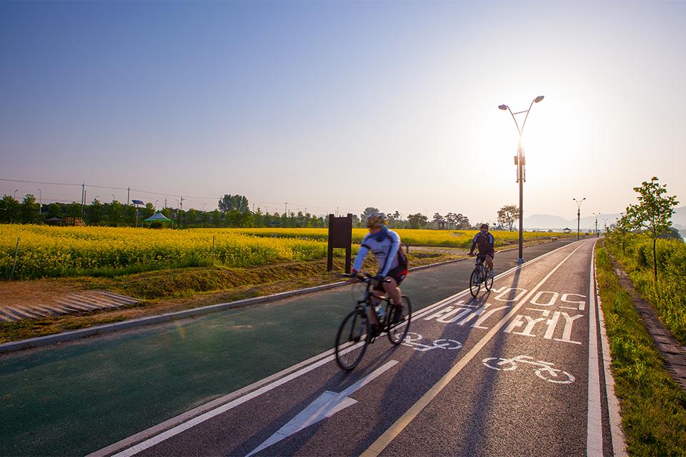 한강에서 자전거를 타고 있는 사진이다.